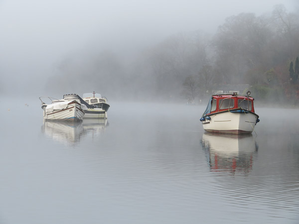 Early Morning Mist at Lerryn