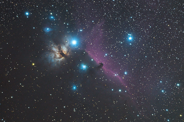 Flame and the Horsehead nebulae in constellation Orion