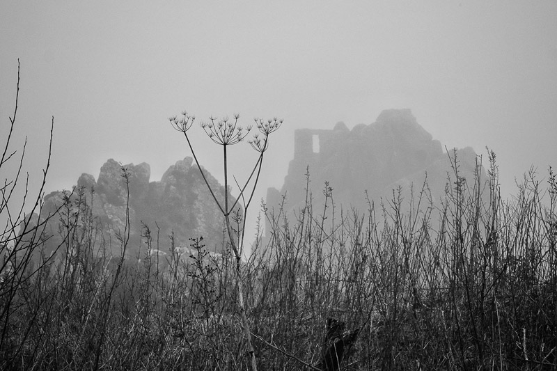 Rock in the Mist & Cowparsley photographed by Peter Hicks