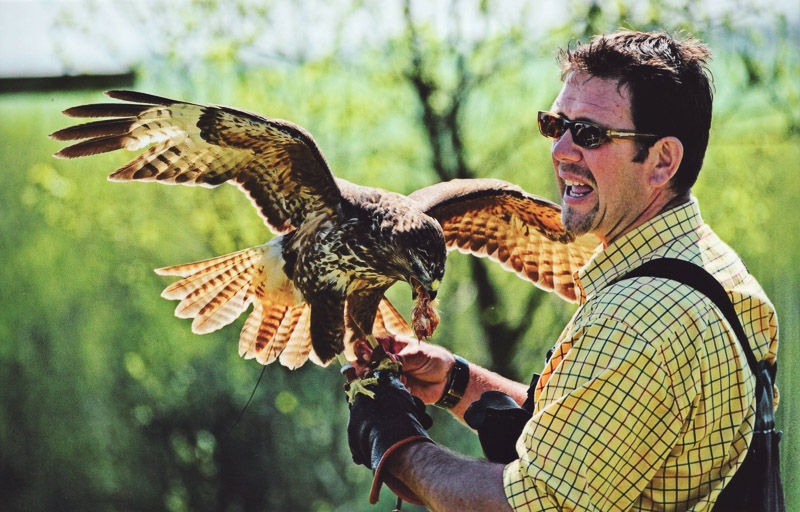 The Falconer photographed by Peter Hicks