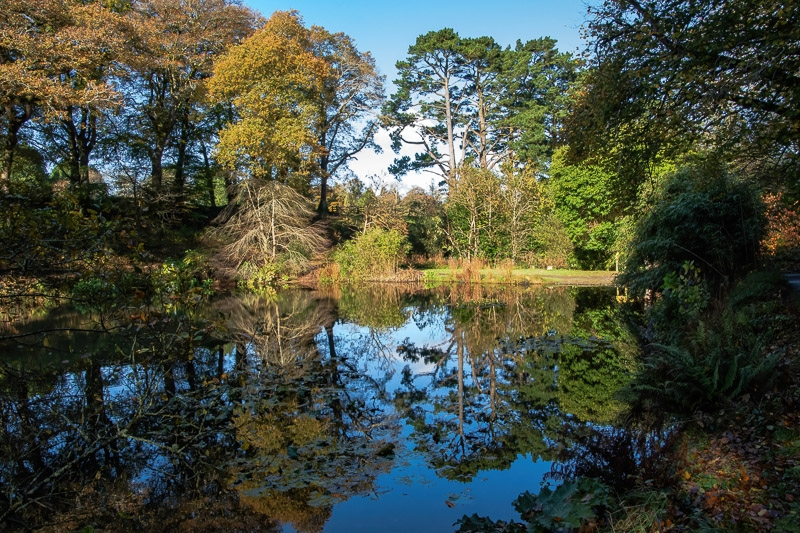 Lake Reflections photographed by Paul Kenealy