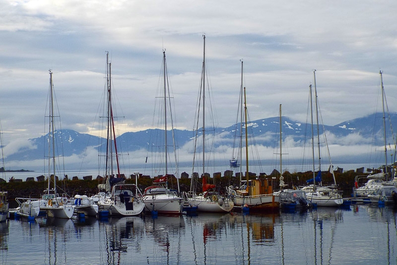 Norwegian Marina photographed by Karen Shelsher